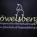 Stickerei Stickpunkt Löwelsberg Bad Orb